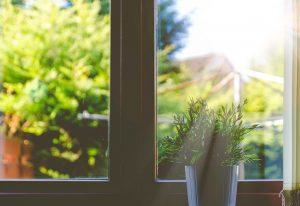 raam open vocht